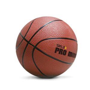 כדורסל מיני – PRO MINI